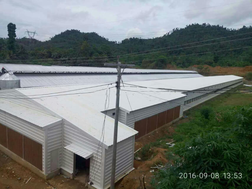 Light Steel Structure Broiler Chicken Shed Project in Philippines